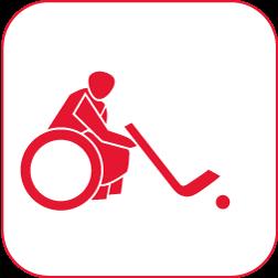 elektrohockey